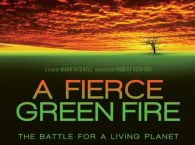 fiercegreenfire for web