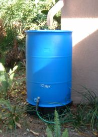 Alsrainbarrel